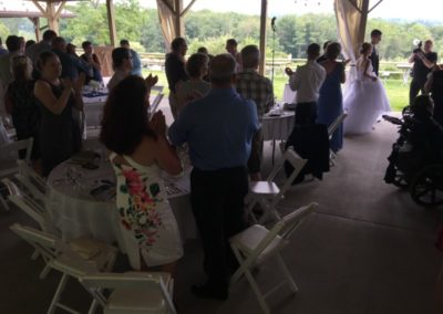 1a View Wedding Introductions